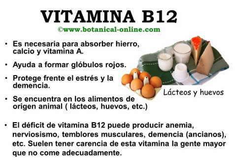 Propiedades de la vitamina B12