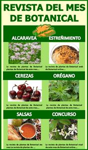 Revista de Plantas de Botanical-online
