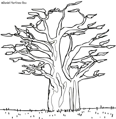 Dibujos De árboles Botanical Online