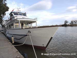 Viajar en barco puede marear