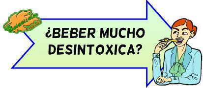 beber desintoxica?