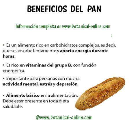 Propiedades del pan - Alimentos con levadura de cerveza ...
