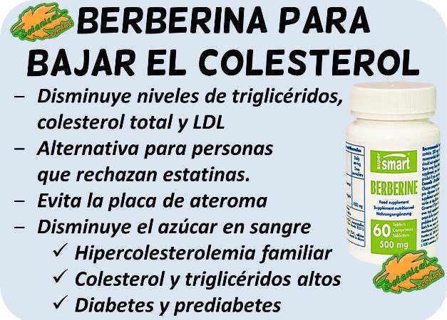 berberina remedio para bajar el colesterol y trigliceridos