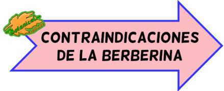 contraindicaciones berberina