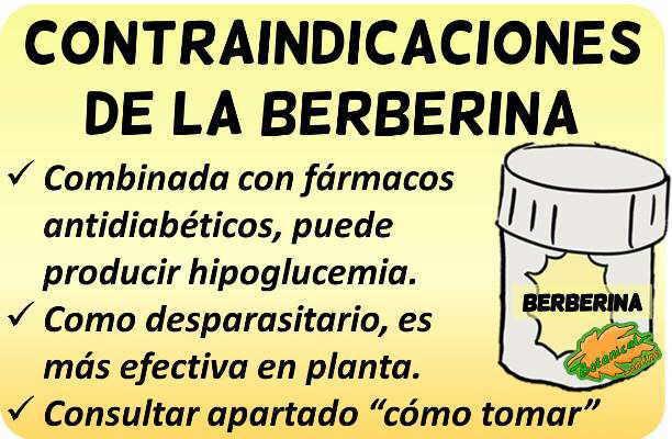 contraindicaciones suplementos de berberina