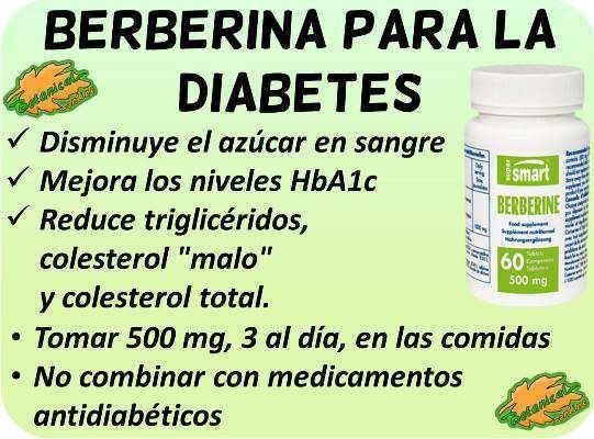 propiedades medicinales y beneficios suplemento berberina para la diabetes