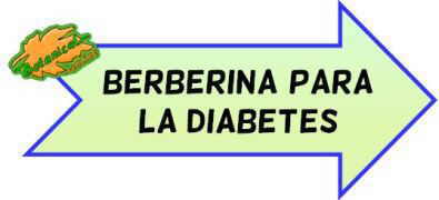 berberina diabetes