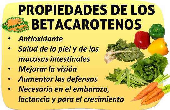 propiedades de los betacarotenos vitamina a antioxidantes