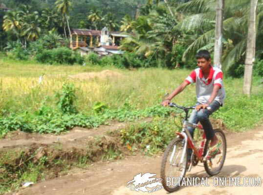 chico paseando en bicicleta