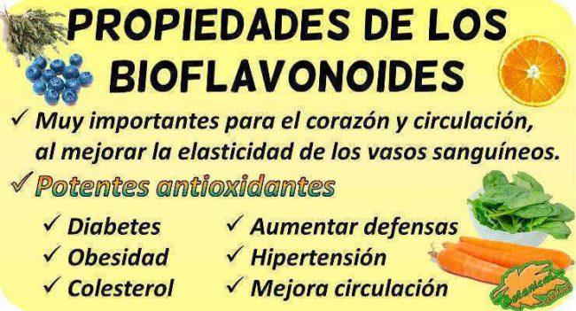 bioflavonoides propiedades de los flavonoides