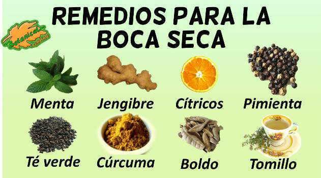Remedios para la boca seca - Sequedad de boca remedios naturales ...