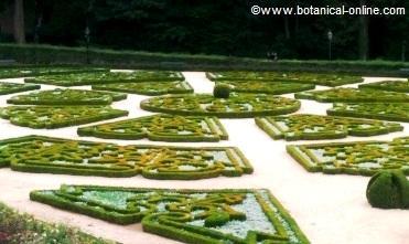 jardin de boj