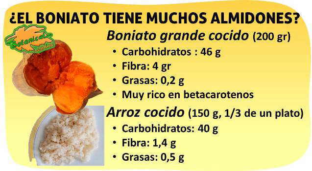 propiedades del boniato o patata dulce para la diabetes