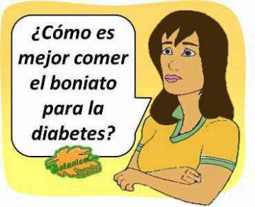 boniato para la diabetes camote papa dulce