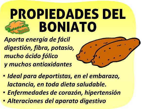 Propiedades Del Boniato
