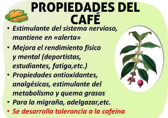 Propiedades medicinales y beneficios del café