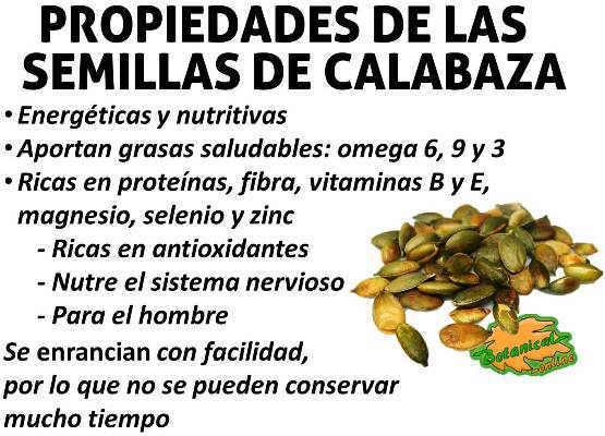 semillas de calabaza o zapallo propiedades y beneficios