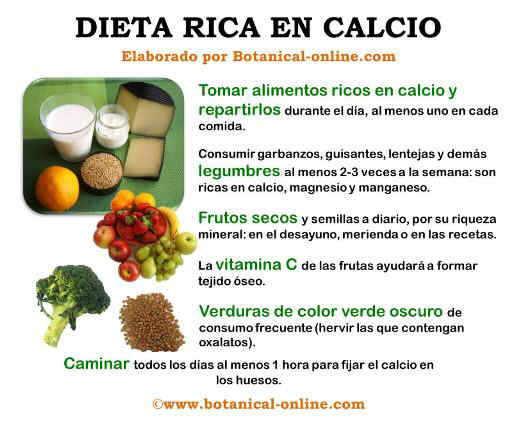 Dieta rica en calcio - Alimentos que tienen calcio ...
