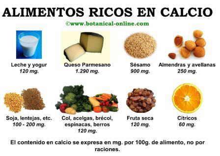 Beneficios del calcio - Alimentos para la osteoporosis ...