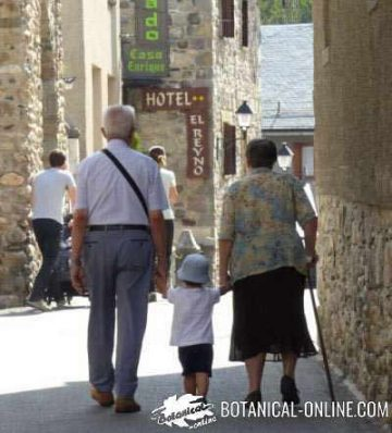 foto ancianos con niño caminando por la calle