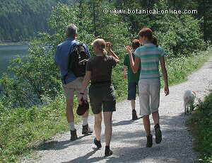 caminata en el campo