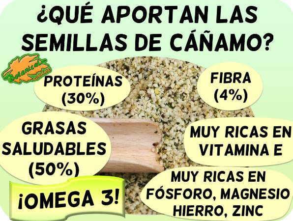 semillas cañamo composicion propiedades nutrientes