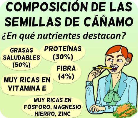 semillas cañamo composicion nutricional