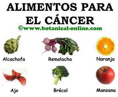 Alimentos para el cáncer, dieta anticancerigena
