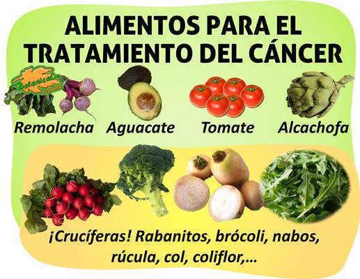 Remedios para el c ncer - Alimentos que evitan el cancer ...