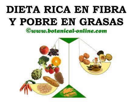 Dieta rica en fibra y pobre en grasas