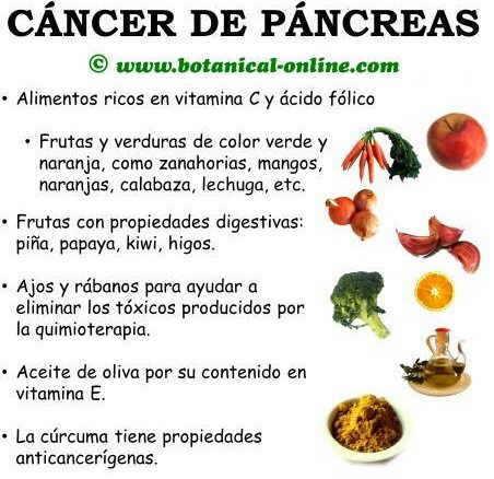 Dieta contra el c ncer de p ncreas - Alimentos que evitan el cancer ...