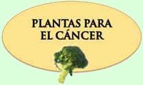 Medicina para el cancer