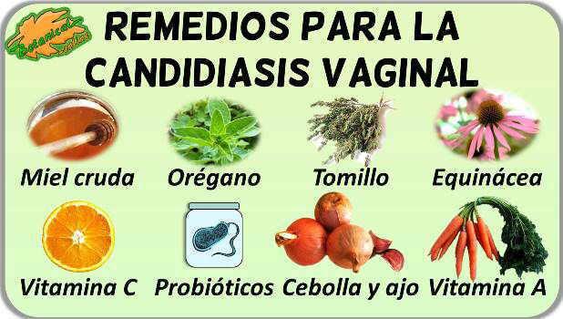 remedios naturales caseros candidiasis vaginal plantas para tratamiento natural