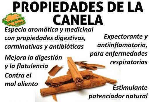 propiedades medicinales y beneficios de la canela cinnamon