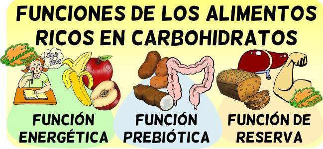 carbohidratos funciones