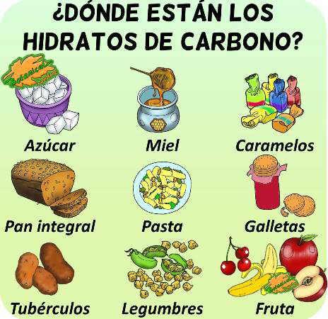 Carbohidratos hidratos carbono alimentos ricos en tipos simples complejos