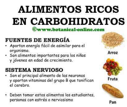Hidratos de carbono - Alimentos ricos en proteinas pdf ...