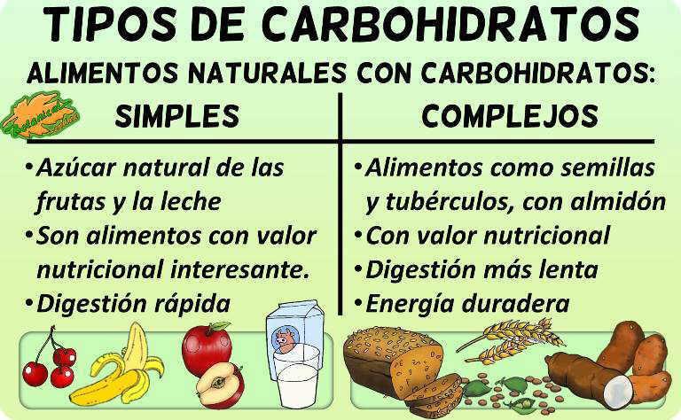 Tabla clasificaci n de los carbohidratos - Alimentos ricos en carbohidratos ...