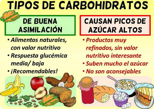 Tipos carbohidratos clasificacion nutricional dietetica saludables perjudiciales