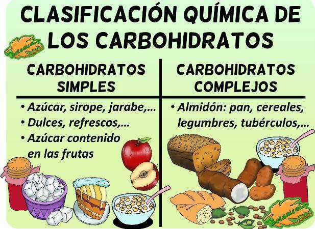 tipos de carbohidratos hidratos alimentos simples complejos