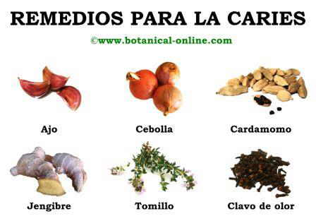 Remedios Naturales Para La Caries Dental Botanical Online
