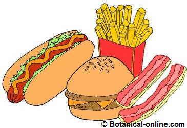 comida chatarra fast food