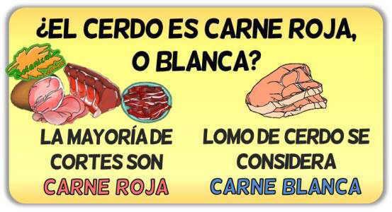 carne cerdo propiedades carne blanca
