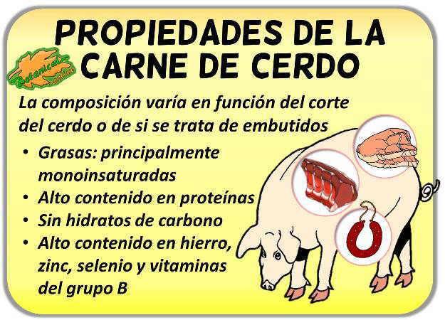 propiedades de la carne de cerdo roja blanca vitaminas y hierro