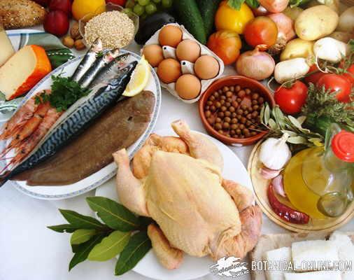 carne pescado dieta saludable