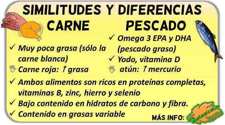 diferencias carne y pescado, nutricion y beneficios