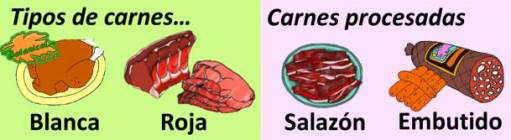 tipos de carne, embutido salazon carne blanca y roja