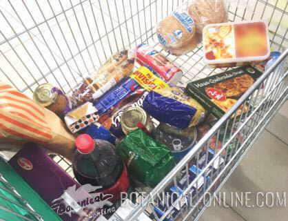 ejemplo real carro de la compra con comida chatarra ultraprocesados