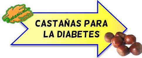 castañas para la diabetes