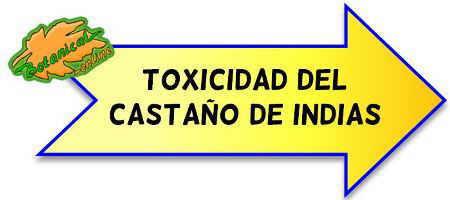 toxicidad castaño